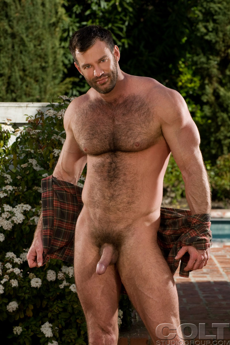 Dick sargent hairy chest